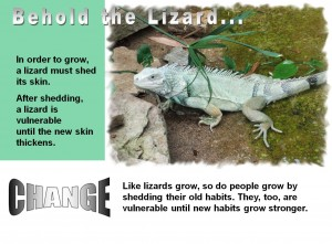 Lizards and Change